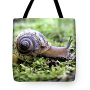 Snail On Billy Goat Trail Tote Bag
