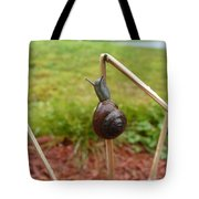 Snail Out On A Limb  Tote Bag