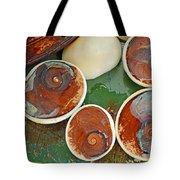 Snail Stones Tote Bag