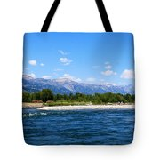 Snake And Tetons Tote Bag