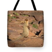 Mongoose Or Snake Eater Tote Bag