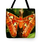 Snake Head Tote Bag