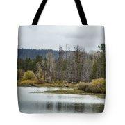 Snake River Near Cattleman's Bridge Site -  Grand Tetons Tote Bag