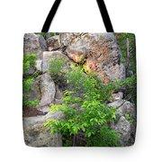 Snake Rock Tote Bag