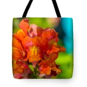 Snapdragon Flower Blurred Background Tote Bag