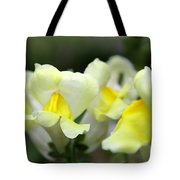 Snapdragons Group Of Yellow Cream Tote Bag