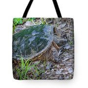 Snapper Eggs Tote Bag