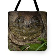 Snapper Tote Bag