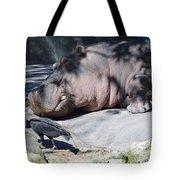 Sneaky Bird Tote Bag
