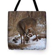 Sniffing Stag Tote Bag