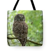 Snooze Time - Owl Tote Bag