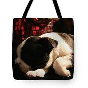 Snoozer Tote Bag
