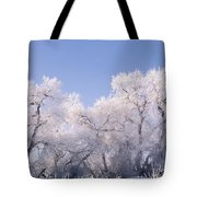 Snow And Ice Blanket Cottonwood Trees Tote Bag