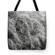 Snow And Ice Covered Trees At The Base Of Niagara Falls Tote Bag