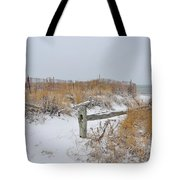 Snow And Sand Tote Bag by Catherine Reusch Daley