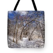 Snow Arches Tote Bag