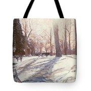 Snow At Broadlands Tote Bag