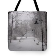 Snow At Bulls Island - 29 Tote Bag
