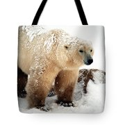 Snow Bear Tote Bag