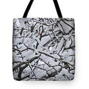 Snow Branches 2-1-15 Tote Bag