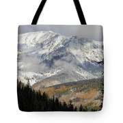 Snow Capped Beauty Tote Bag