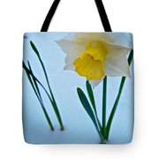 Snow-capped Daffodil On May 21 Near Des Chutes National Forest-or  Tote Bag