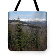 Snow Capped View Tote Bag