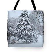 Snow Conifer 2-1-15 Tote Bag