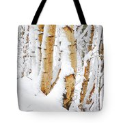 Snow Covered Birch Trees Tote Bag by John Kelly
