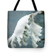 Snow Covered Pine Tree Branch Tote Bag