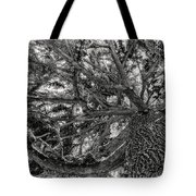 Snow Covered Pine Tree Seen From Below Tote Bag