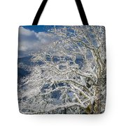 Snow Covered Tree And Winter Scene Tote Bag