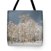 Snow Covered Trees In The Forest In Winter Tote Bag by Matthias Hauser