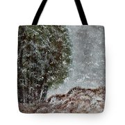 Snow Day II Tote Bag
