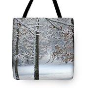 Snow Day Iv Tote Bag