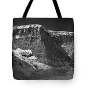 1m3722-bw-snow Dome  Tote Bag