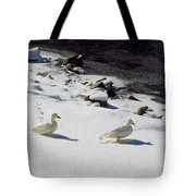 Snow Ducks Tote Bag