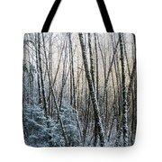 Snow Falls On The Alders  Astoria Tote Bag