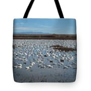 Snow Geese Bosque Tote Bag