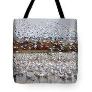 Snow Geese No.4 Tote Bag