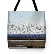Snow Geese Taking Off At  Loess Bluffs National Wildlife Refuge Tote Bag
