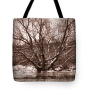 Snow Imp 1 - Tree Covered With Snow January 2014 Tote Bag