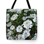 Snow In Summer Tote Bag