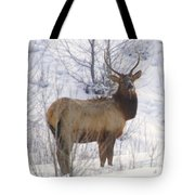 Snow In The Face  Tote Bag