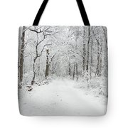 Snow In The Park Tote Bag by Raymond Salani III
