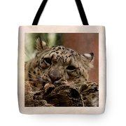 Snow Leopard 17 Tote Bag