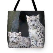 Snow Leopard Cubs Tote Bag