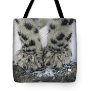 Snow Leopard Feet Tote Bag