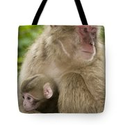 Snow Monkeys, Mother With Her Baby Tote Bag