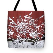 Snow On Burdock Burr Weed Against Red Barn Siding Tote Bag